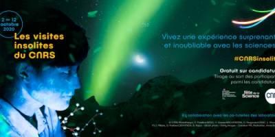 #CNRSinsolite | The Investigation